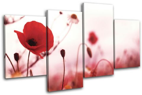 Poppies Flowers Floral - 13-0916(00B)-MP04-LO